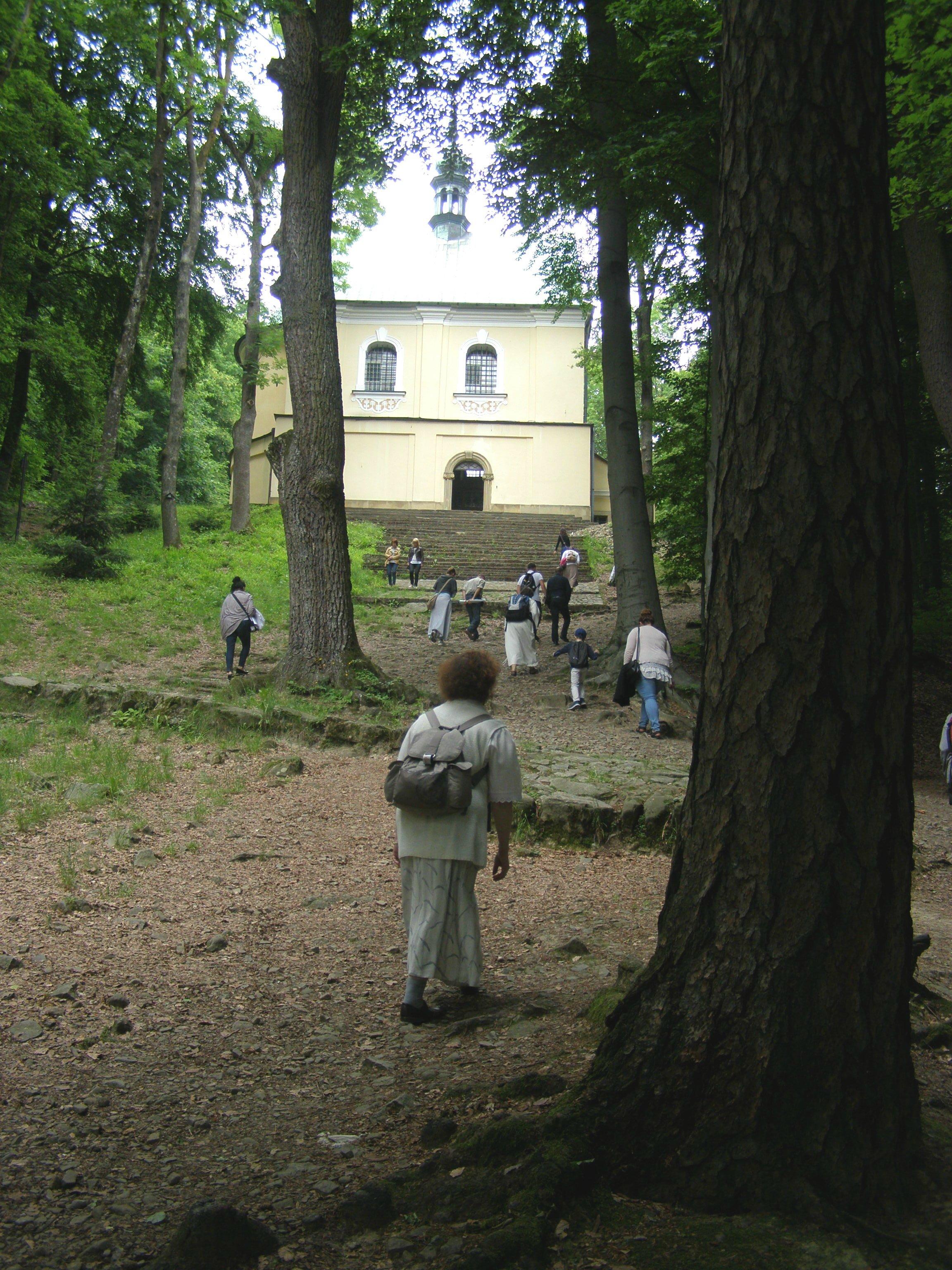 Pielgrzymka do Kalwarii-Do Stacji Upadku Jezusa_2016